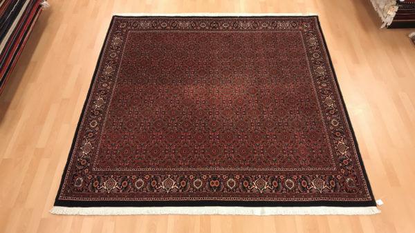 Bidjar tæppe uden midt persisk tæppe
